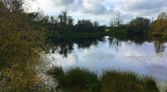 The loch or lake in Skeheenarinky. It's the lake on which some believe a sceach (bush) floated, appearing to dance on the water. Thus giving its name to Skeheenarinky. | Photo (c) Tipp FM/MaryAnn Vaughan